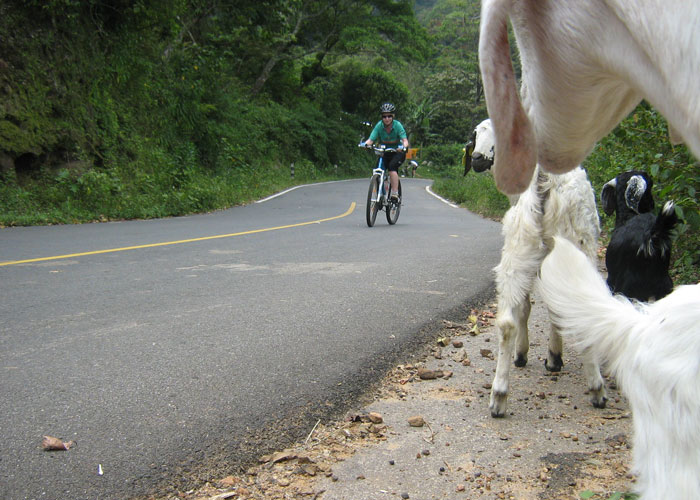 Friends along the road during Munnar cycling