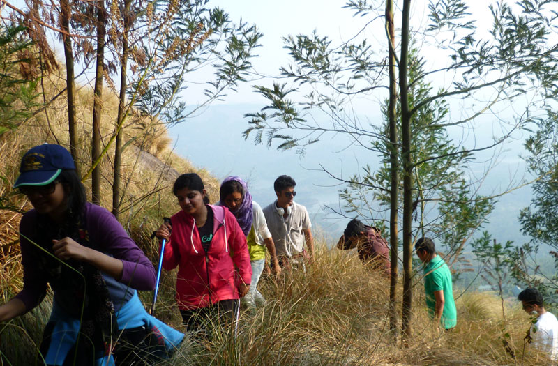 Trekking to Phantom's Head near Munnar camp